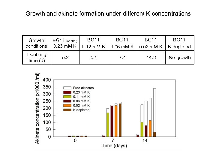 Growth and akinete formation under different K concentrations Growth conditions Doubling time (d) BG