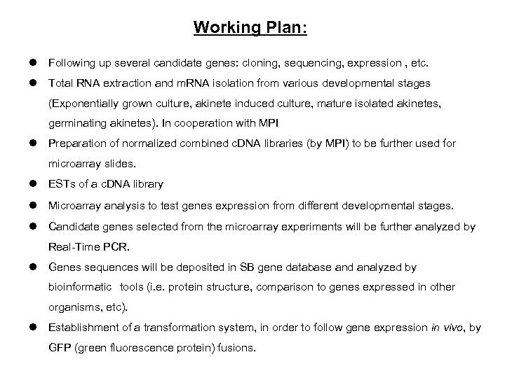 Working Plan: l Following up several candidate genes: cloning, sequencing, expression , etc. l
