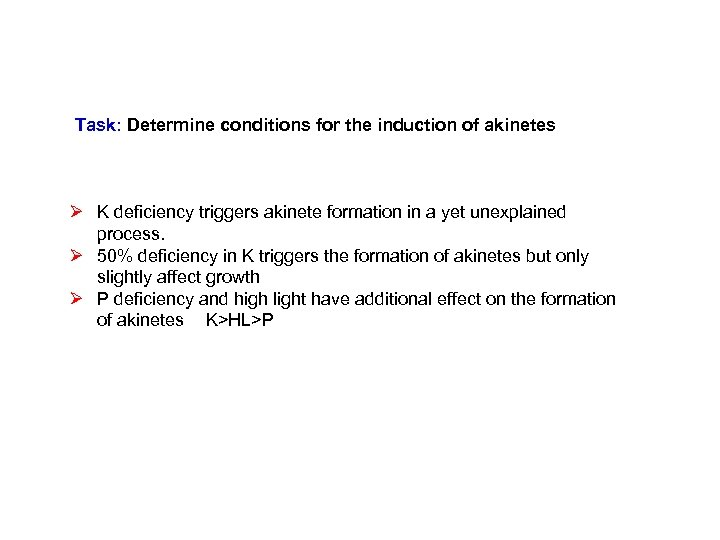 Task: Determine conditions for the induction of akinetes Ø K deficiency triggers akinete formation