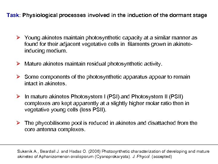 Task: Physiological processes involved in the induction of the dormant stage Ø Young akinetes