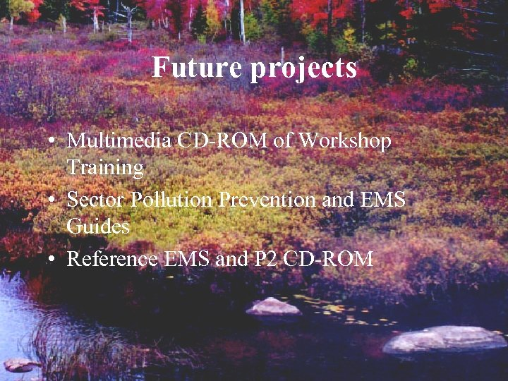 Future projects • Multimedia CD-ROM of Workshop Training • Sector Pollution Prevention and EMS