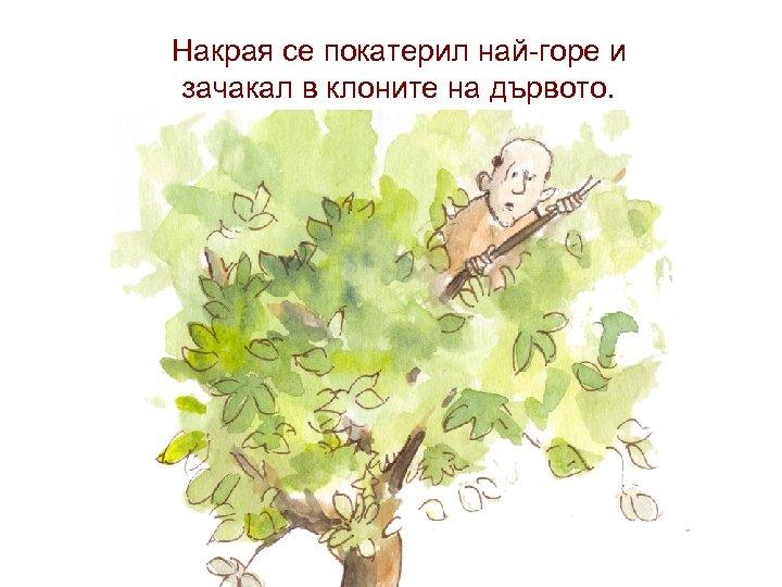 Накрая се покатерил най-горе и зачакал в клоните на дървото.