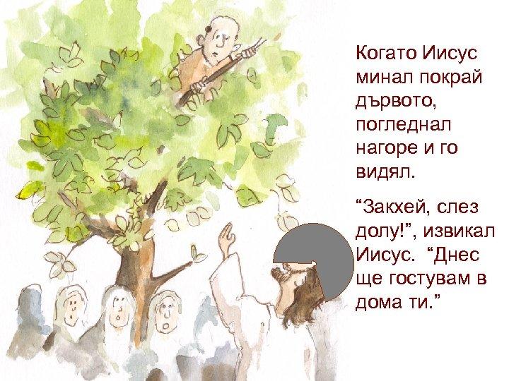 """Когато Иисус минал покрай дървото, погледнал нагоре и го видял. """"Закхей, слез долу!"""", извикал"""