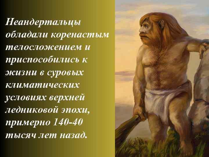 Неандертальцы обладали коренастым телосложением и приспособились к жизни в суровых климатических условиях верхней ледниковой