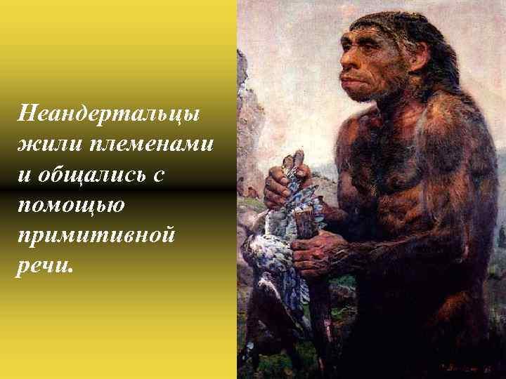 Неандертальцы жили племенами и общались с помощью примитивной речи.
