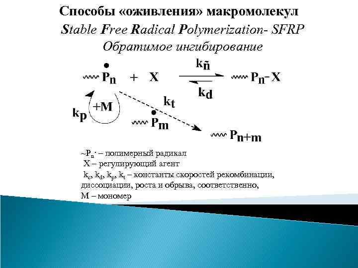 Способы «оживления» макромолекул Stable Free Radical Polymerization- SFRP Обратимое ингибирование ~Pn· – полимерный радикал