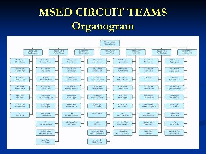 MSED CIRCUIT TEAMS Organogram 25