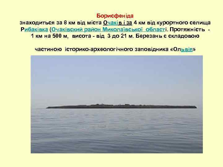Борисфеніда знаходиться за 8 км від міста Очаків і за 4 км від курортного