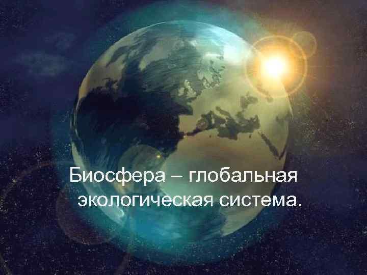 Биосфера – глобальная экологическая система.