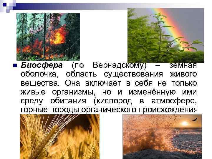 n Биосфера (по Вернадскому) – земная оболочка, область существования живого вещества. Она включает в