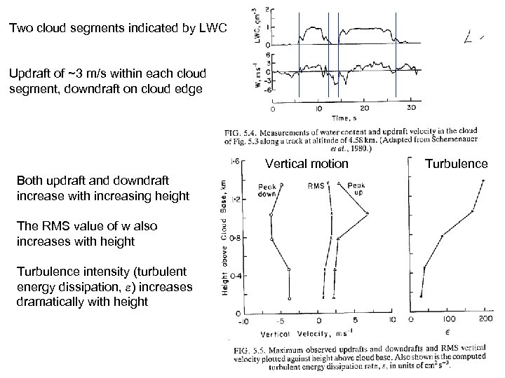 Two cloud segments indicated by LWC Updraft of ~3 m/s within each cloud segment,