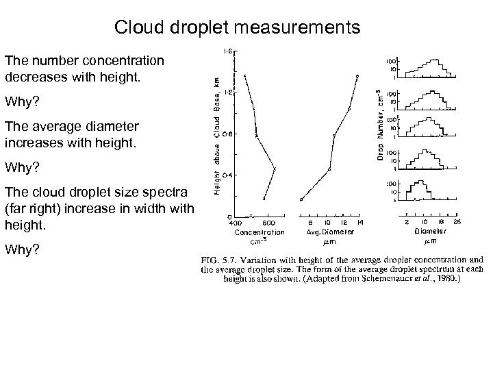 Cloud droplet measurements The number concentration decreases with height. Why? The average diameter increases
