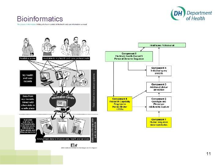 Bioinformatics 11