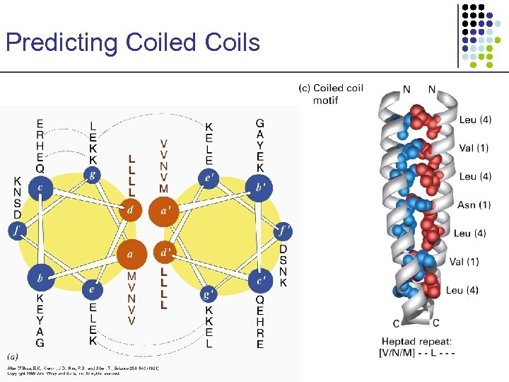 Predicting Coiled Coils