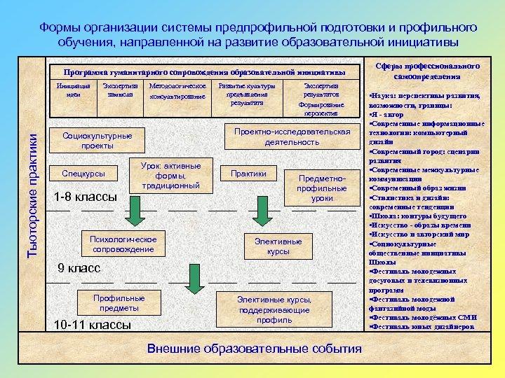 Формы организации системы предпрофильной подготовки и профильного обучения, направленной на развитие образовательной инициативы Программа