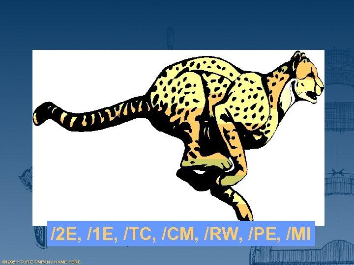 /2 E, /1 E, /TC, /CM, /RW, /PE, /MI © 1998 YOUR COMPANY NAME