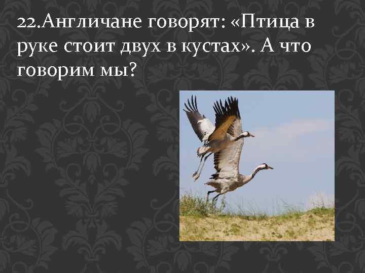 22. Англичане говорят: «Птица в руке стоит двух в кустах» . А что говорим