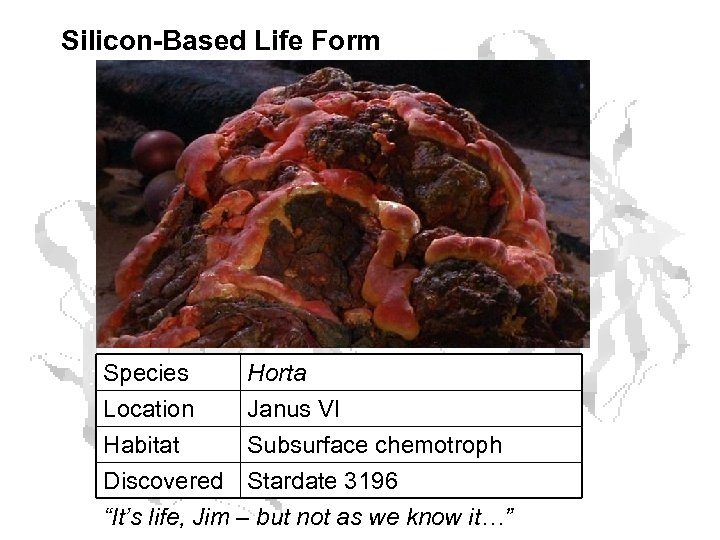 Silicon-Based Life Form Species Location Habitat Discovered Horta Janus VI Subsurface chemotroph Stardate 3196