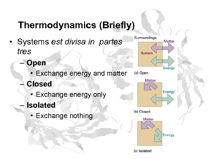 Thermodynamics (Briefly) • Systems est divisa in partes tres – Open • Exchange energy