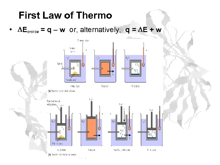First Law of Thermo • E = q – w or, alternatively, q =