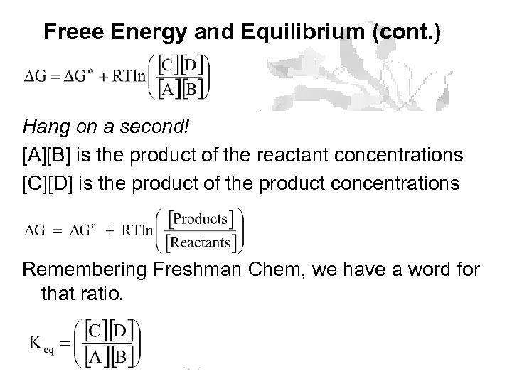 Freee Energy and Equilibrium (cont. ) Hang on a second! [A][B] is the product