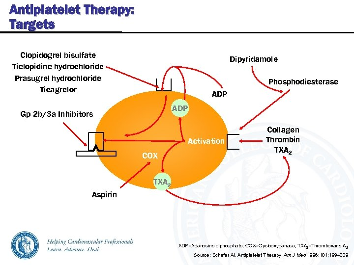 Antiplatelet Therapy: Targets Clopidogrel bisulfate Ticlopidine hydrochloride Prasugrel hydrochloride Ticagrelor Dipyridamole Phosphodiesterase ADP Gp
