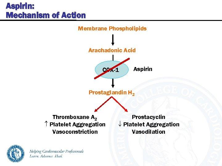 Aspirin: Mechanism of Action Membrane Phospholipids Arachadonic Acid COX-1 Aspirin Prostaglandin H 2 Thromboxane
