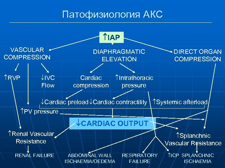 Патофизиология АКС IAP VASCULAR COMPRESSION RVP IVC Flow DIAPHRAGMATIC ELEVATION Cardiac compression DIRECT ORGAN