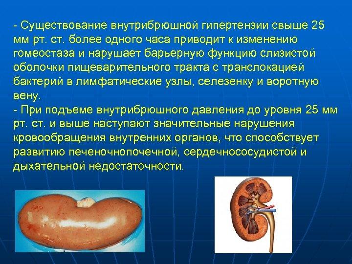 - Существование внутрибрюшной гипертензии свыше 25 мм рт. ст. более одного часа приводит к