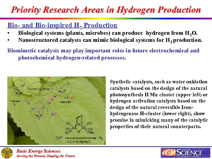 Priority Research Areas in Hydrogen Production Bio- and Bio-inspired H 2 Production • •