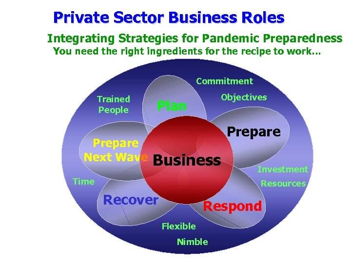 Private Sector Business Roles Integrating Strategies for Pandemic Preparedness You need the right ingredients