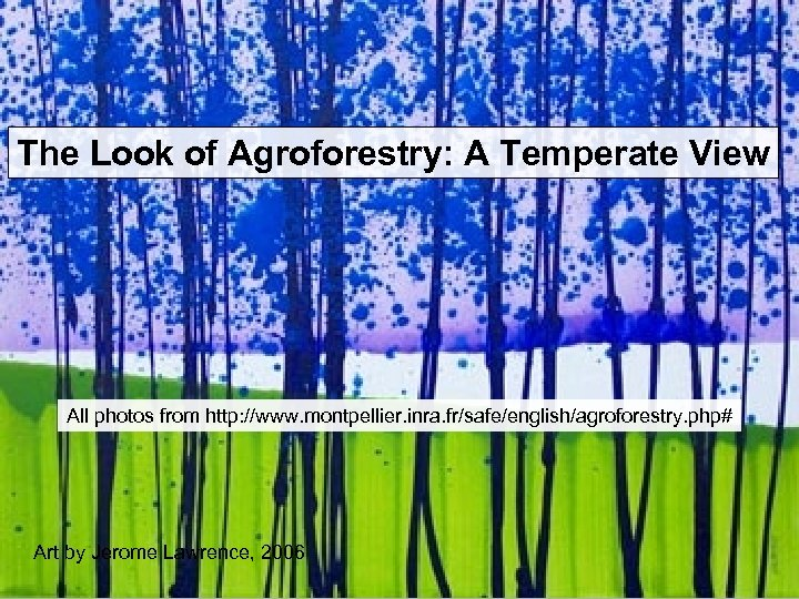 The Look of Agroforestry: A Temperate View All photos from http: //www. montpellier. inra.