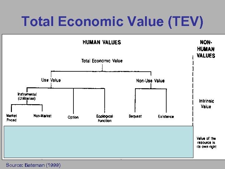 Total Economic Value (TEV) Source: Bateman (1999)