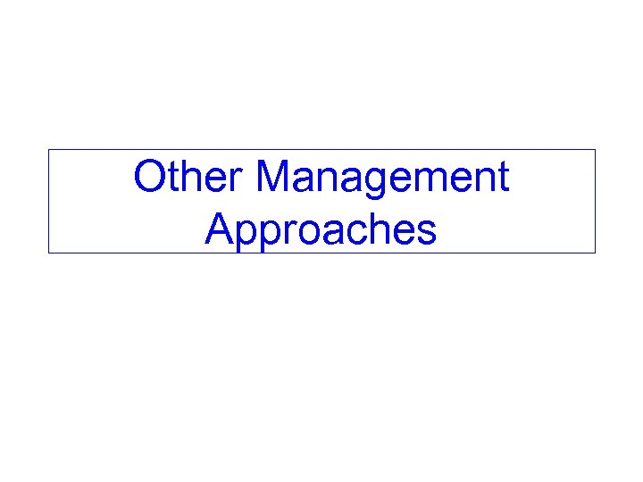 Other Management Approaches