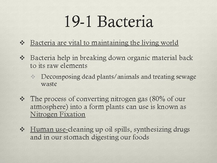 19 -1 Bacteria v Bacteria are vital to maintaining the living world v Bacteria