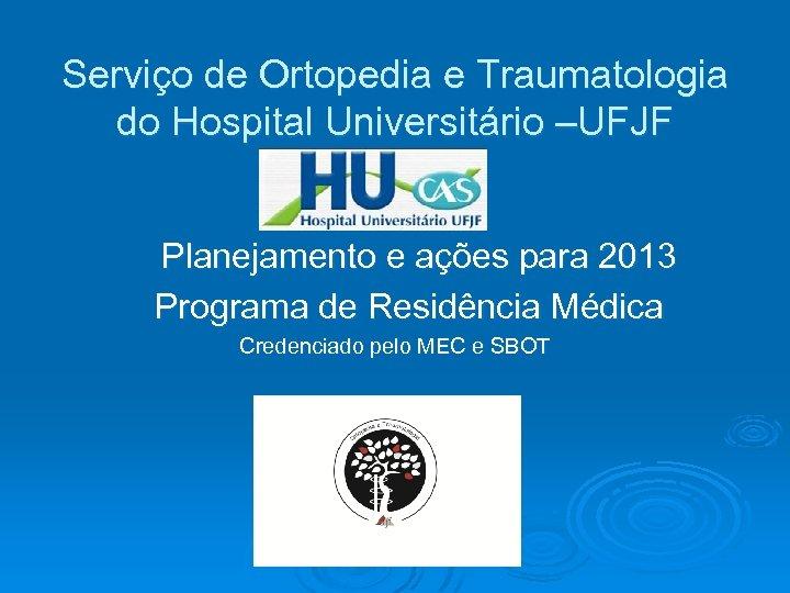 Serviço de Ortopedia e Traumatologia do Hospital Universitário –UFJF Planejamento e ações para 2013