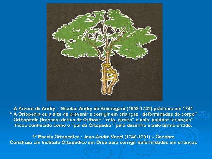 A Arvore de Andry : Nicolas Andry de Boisregard (1658 -1742) publicou em 1741