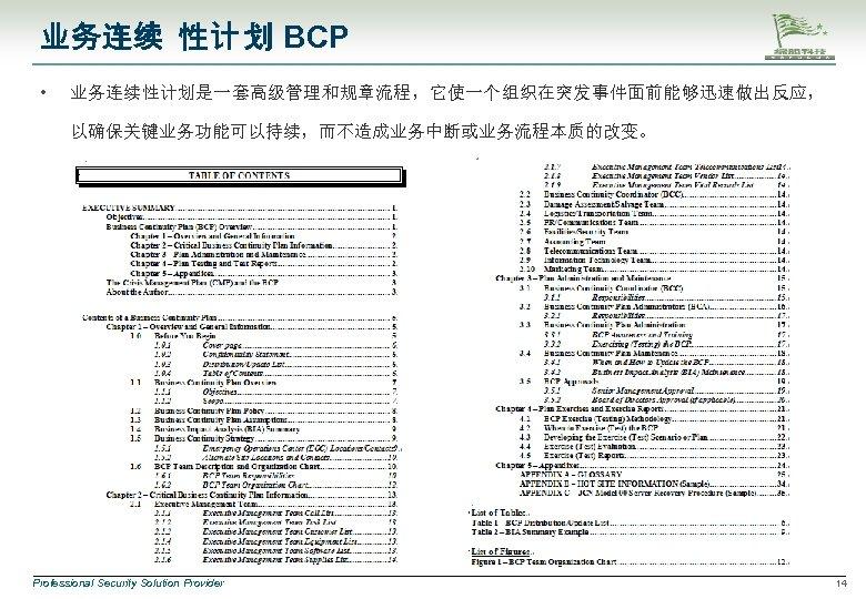 业务连续 性计 划 BCP • 业务连续性计划是一套高级管理和规章流程,它使一个组织在突发事件面前能够迅速做出反应, 以确保关键业务功能可以持续,而不造成业务中断或业务流程本质的改变。 Professional Security Solution Provider 14