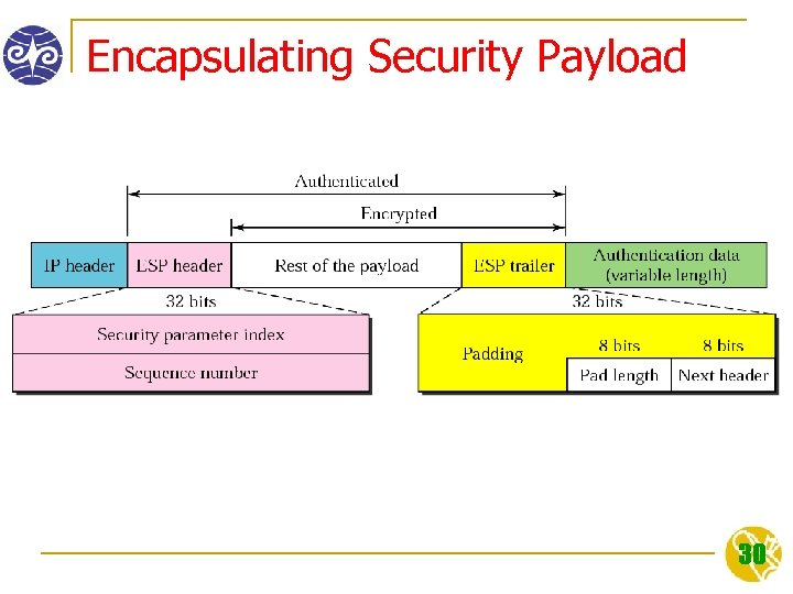Encapsulating Security Payload 30