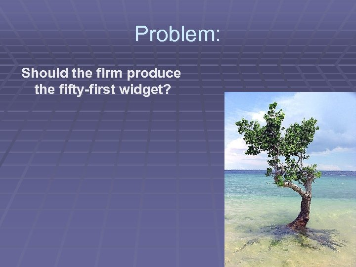 Problem: Should the firm produce the fifty-first widget?