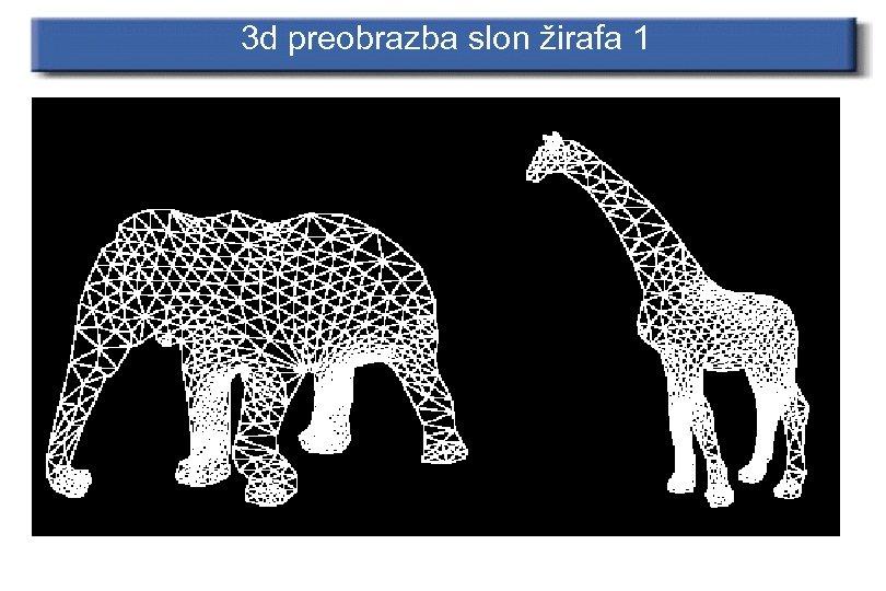 3 d preobrazba slon žirafa 1