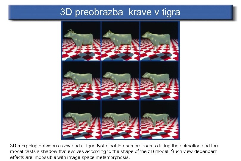 3 D preobrazba krave v tigra 3 D morphing between a cow and a