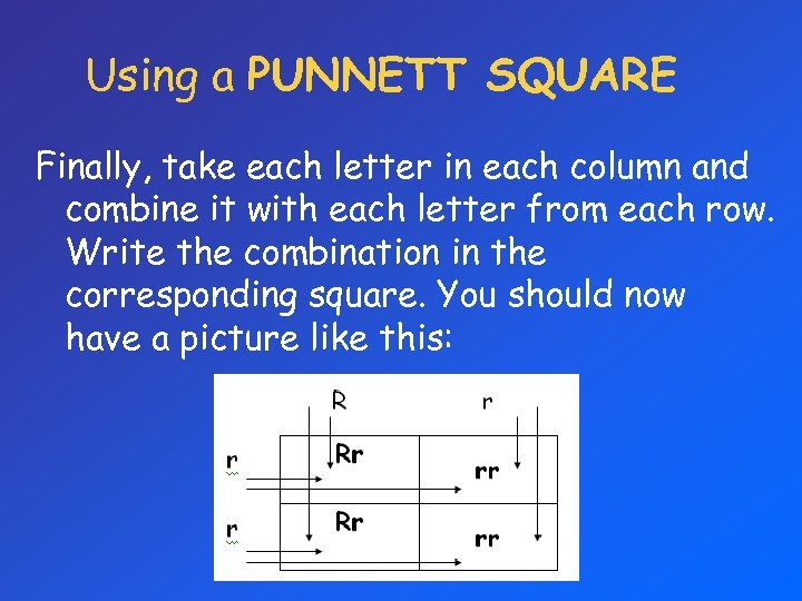 Using a PUNNETT SQUARE Finally, take each letter in each column and combine it