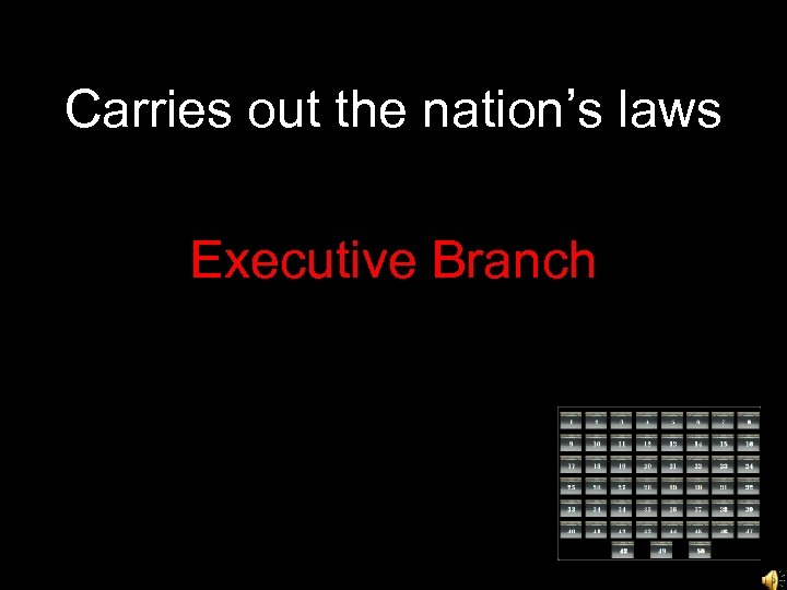 Carries out the nation's laws Executive Branch