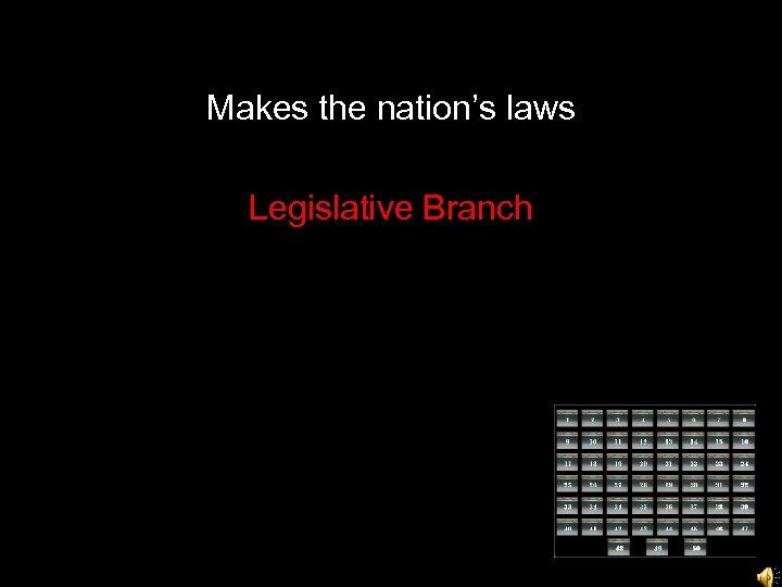 Makes the nation's laws Legislative Branch