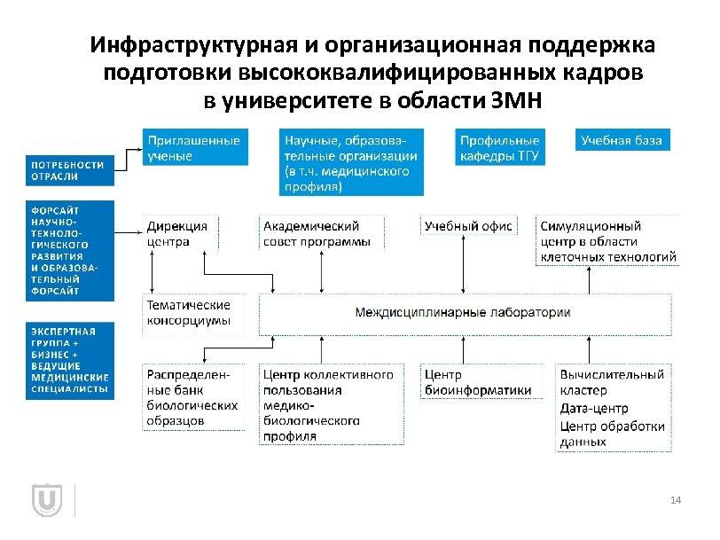 Инфраструктурная и организационная поддержка подготовки высококвалифицированных кадров в университете в области ЗМН 14