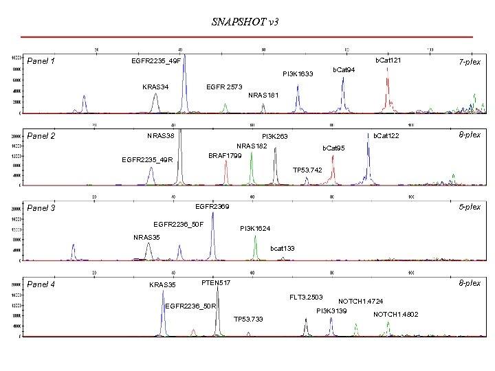 SNAPSHOT v 3 Panel 1 b. Cat 121 EGFR 2235_49 F b. Cat 94