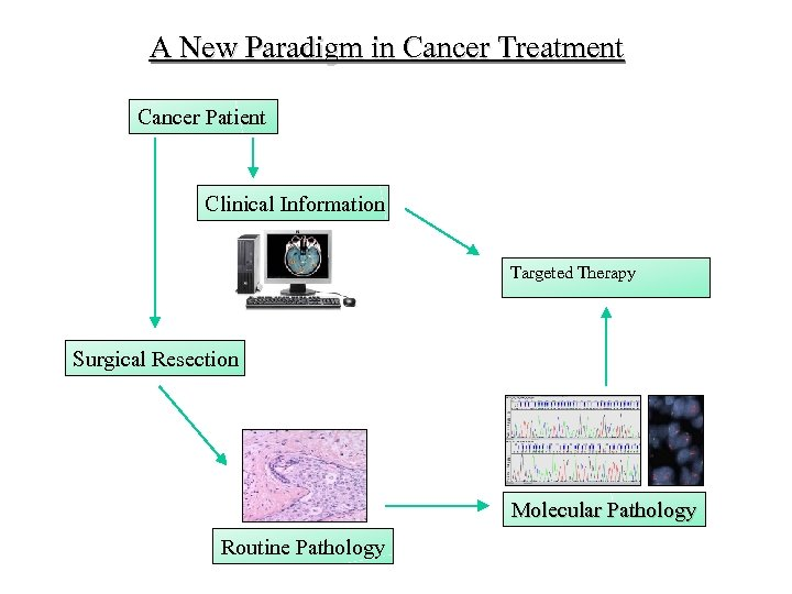A New Paradigm in Cancer Treatment Cancer Patient Clinical Information Targeted Therapy Surgical Resection