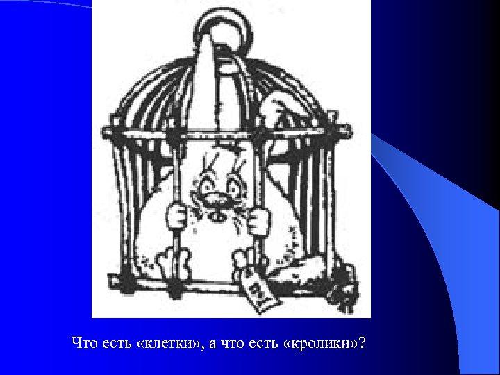 Что есть «клетки» , а что есть «кролики» ?