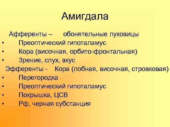 Амигдала Афференты – обонятельные луковицы • Преоптический гипоталамус • Кора (височная, орбито фронтальная) •